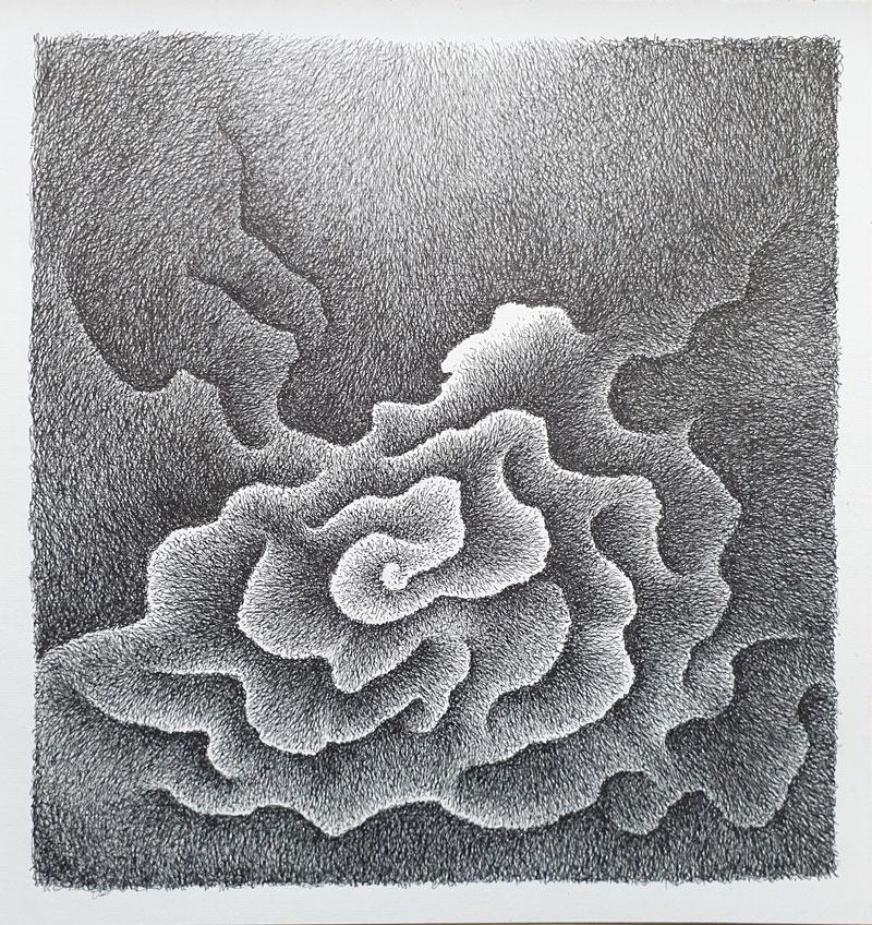 Flor cósmica - Dibujo con tinta china, 35 x 33 cm, 2020