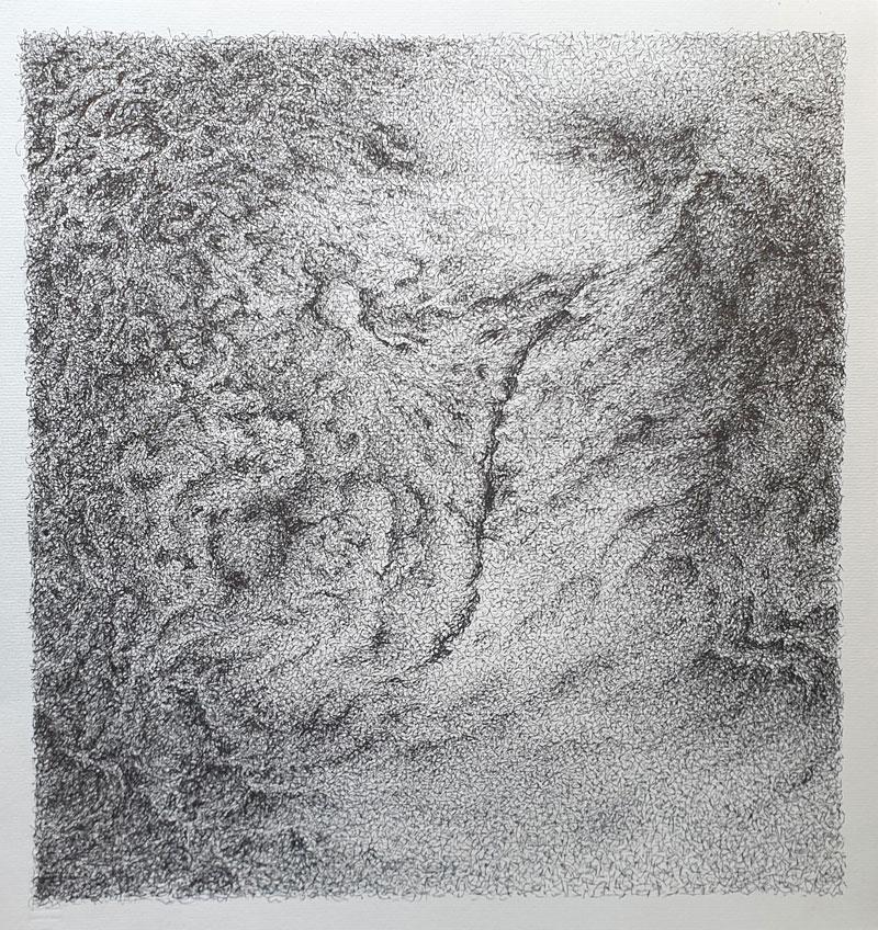 Topografía del interior 6 - Dibujo con tinta china, 35 x 33 cm, 2020